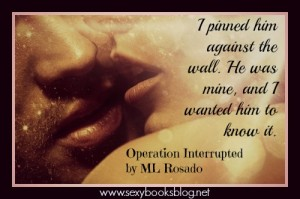 Operation Interrupted by ML Rosado, erotic romantic suspense